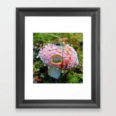 Killer Mushroom Framed Art Print