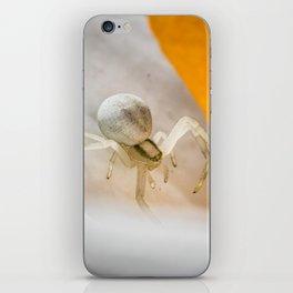 Looking Down iPhone Skin