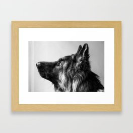 Pepe The Dog Framed Art Print