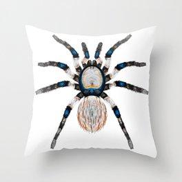 Desert Toned Spider Throw Pillow