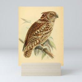 Rajah Scops-Owl, scops brookii15 Mini Art Print