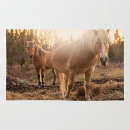 Horses v1 Rug