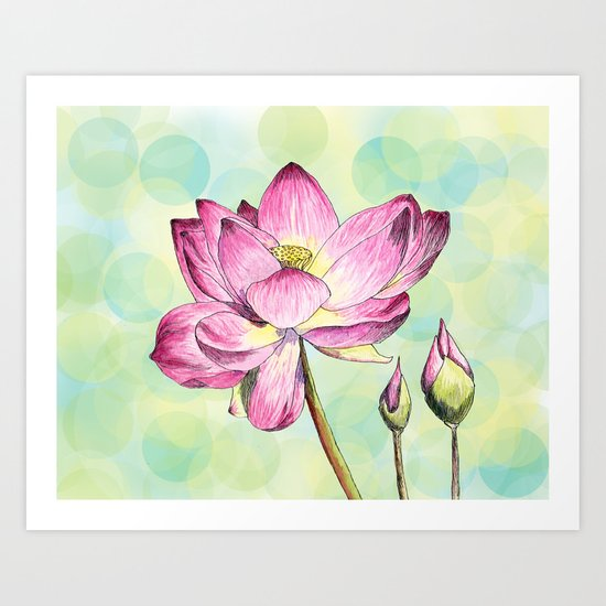 Lotus Bloom Art Print