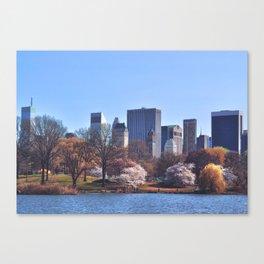 Central park colors Canvas Print