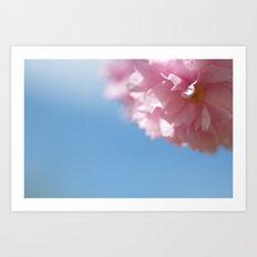 Japanese Spring - Prunus serrulata 2 648 Art Print