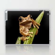 Marbled Tree Frog Laptop & iPad Skin