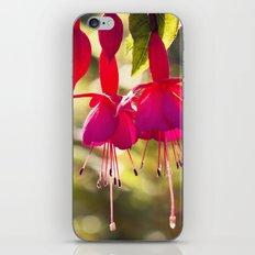 Campanas rojas iPhone Skin