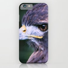 Red-tailed Hawk iPhone 6s Slim Case