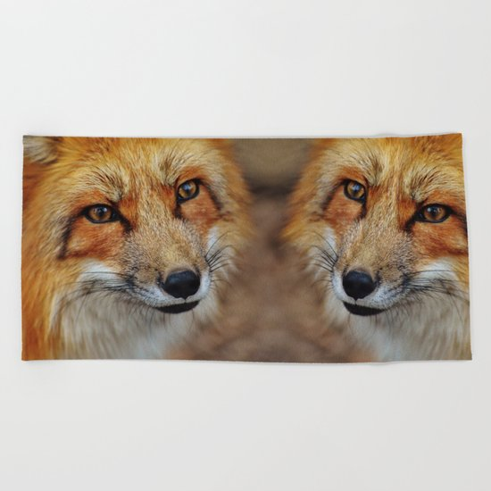 wild fox close up Beach Towel