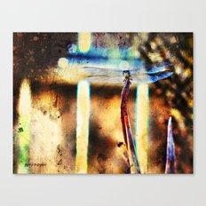 A Single Wish Canvas Print