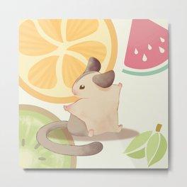 summer fresh fruit Metal Print