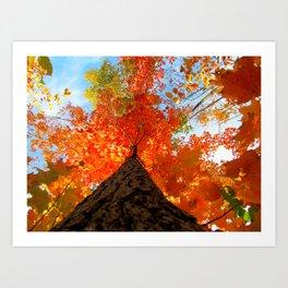 Famous fall 13 Art Print