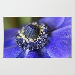 Blue Crown Anemone Rug