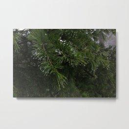 Water Droplets Metal Print