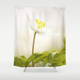 Wood Anemone Blooming in Forest Shower Curtain