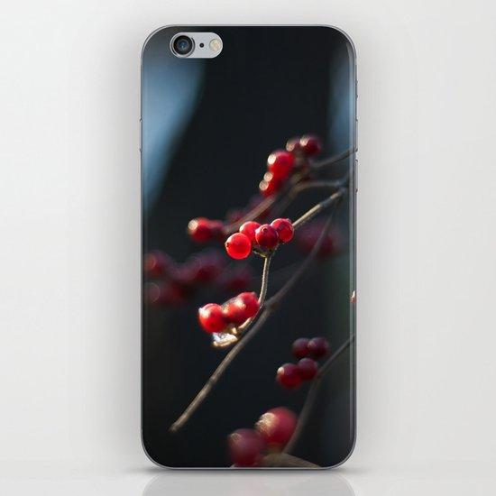 Winter Berries II iPhone & iPod Skin