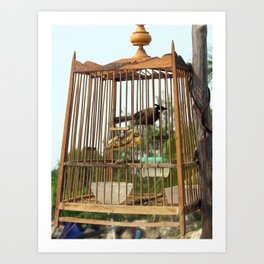caged in Art Print