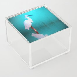 Egret in teal Acrylic Box