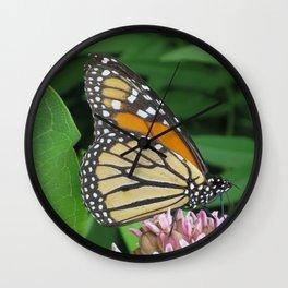Monarch and Milkweed Wall Clock