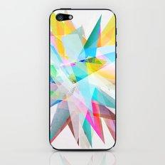 Colorful 4 iPhone & iPod Skin