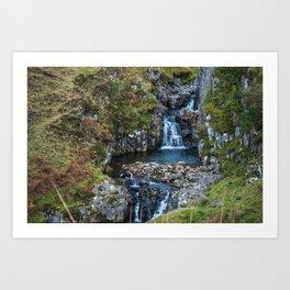 Backyard Waterfall Art Print