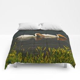 Pelicans in Edmonton - Hermitage Comforters