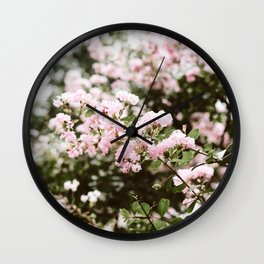 Crape Myrtle in New Orleans Wall Clock