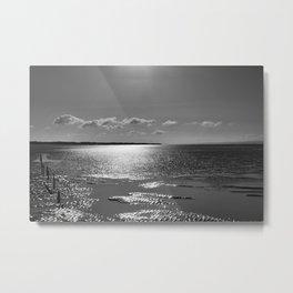 Berrow Beach Metal Print