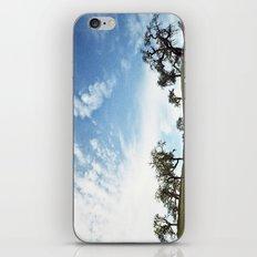 Zaca Station  iPhone & iPod Skin