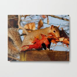 Mouthful of leaves Metal Print