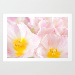 Light pink tulip macro inside Art Print