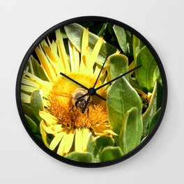 A bee eager to fly Wall Clock