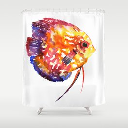 Rainbow Colored Yellow Red Orange Blue Discus, cute fish Shower Curtain