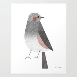 Brown-eared bulbul Art Print