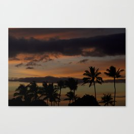 Oahu Palm Shadows Canvas Print