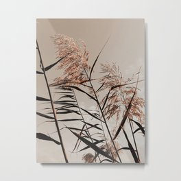 Seasonal Shift | Minimalist Natural | Fall Fields Metal Print