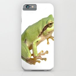 European Tree Frog iPhone Case