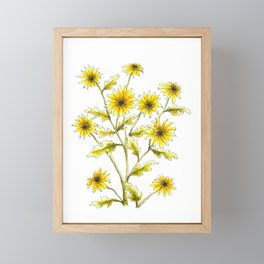 Yellow black eyed Susans painting Framed Mini Art Print