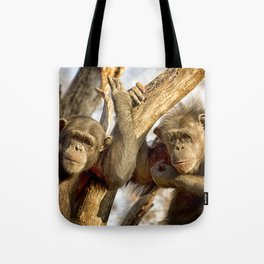 Western Lowland Gorillas Tote Bag