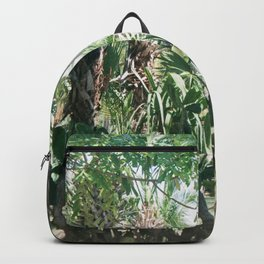 Mexican Palms Backpack