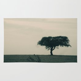 STAND ALONE IN THE WIND Rug