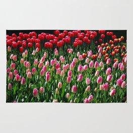 tulip galore! Rug