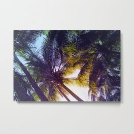 Sunset in Palm Trees Metal Print