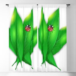 Green leaves and ladybug Blackout Curtain