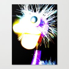 The Funky Ostrich Canvas Print