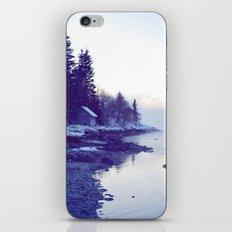 Winter Fog iPhone & iPod Skin