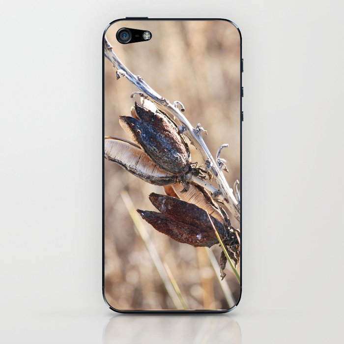 yucca II - winter (out in the open) iPhone Skin