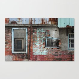 Red & Blue Canvas Print