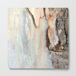 Eucalyptus tree bark and wood Metal Print