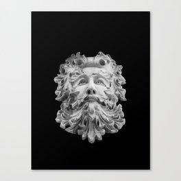 Big Beard Man Canvas Print
